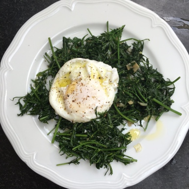 egg with carrot greens