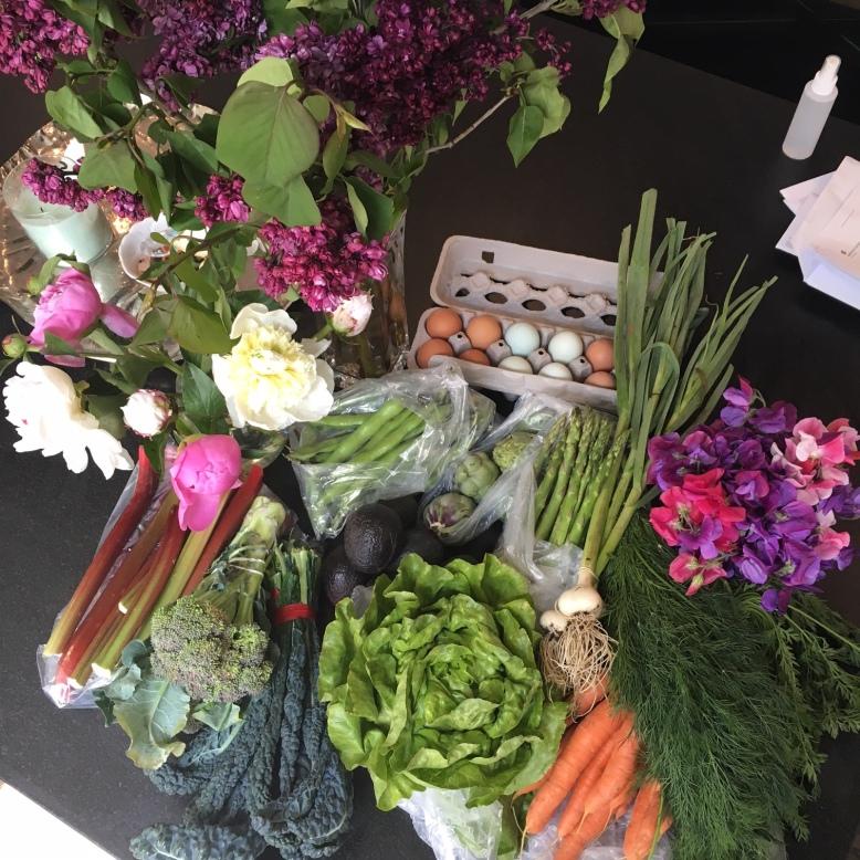 farmers market april 20